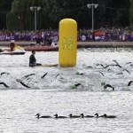 LONDRES. Competidoras durante la prueba de natación en la competición de Triatlón de los Juegos Olímpicos de 2012. Foto: EFE