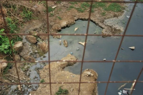 En este canal de la parroquia Juan Gómez Rendón (Progreso) se acumulan las aguas servidas.