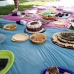 Una variedad de platos veganos se sirvieron en el picnic.