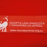 En la sexta feria de adopción de mascotas también se distribuyeron pulseras con mensajes a favor de perros y gatos.