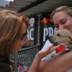 María Auxiliadora Jiménez acaricia a un cachorro durante la sexta feria de adopción de mascotas. El pequeño fue incautado hace un mes cuando era llevado ilegalmente a Perú para ser usado en peleas de perros.